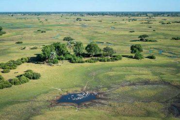 Why Botswana's Gone Green